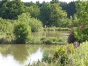 Cheshire Fishing