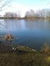 Silverlands Lake