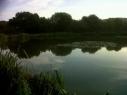 Wellow Dam